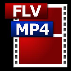 MP4 FLV違い