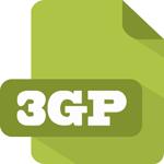 3GP 変換