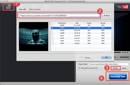 how to download movies on