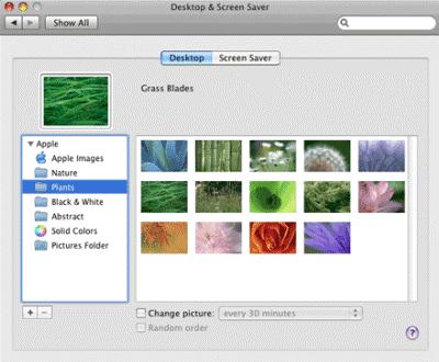 how to download teamviewer in macbook air