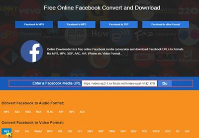Best online Facebook video converter