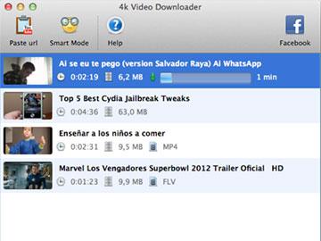 Online downloaders
