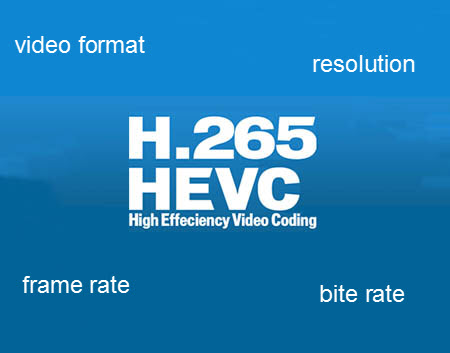 VLC with HEVC Encoder X265 Can Play All HEVC/H265 4K Videos?