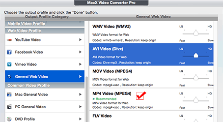 what is avi video format