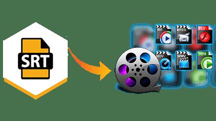 Srt movie files