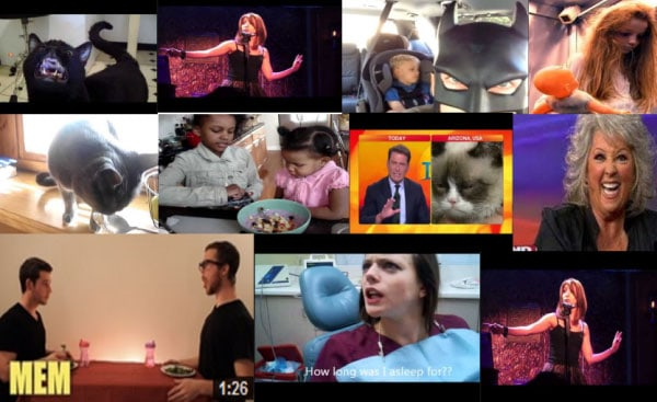 Image of: Cry Funniest Funniest Videos On Youtube Funny Pictures Top 10 Funniest Youtube Videos Of 20162017
